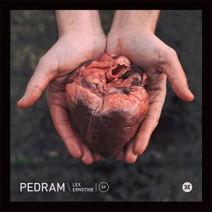 "Pedram/LEX (CARDOPUSHER REMIX) 12"""