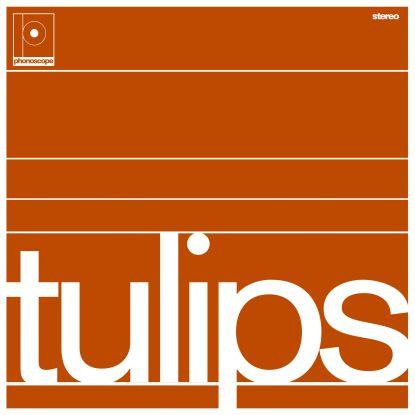 Maston/TULIPS LP