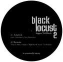 "Black Locust/REGGAE R&B BLENDS #2 12"""