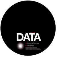 Data/BURNING PARADISE 12""