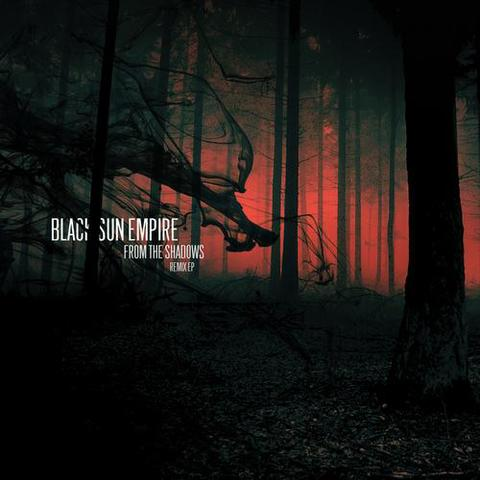 Black Sun Empire/FROM THE... REMIX D12""