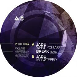 Jade/WHAT YOU ARE (BREAK REMIX) 12""