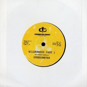 "Speedometer/WILDERNESS 7"""