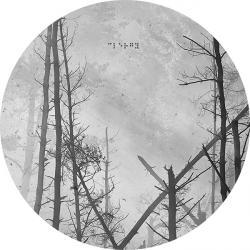 "Dax J/CHASING SHADOWS EP 12"""