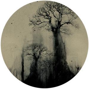 "Tuvaband/TREES (BUTCH REMIXES) 12"""