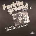 Fertile Ground/RMXS 2-TAKE ME HIGHER 12""