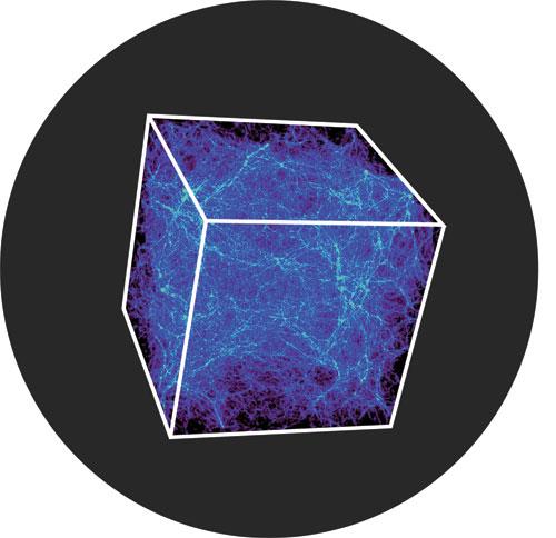 """Innerspace Halflife/CUSTOM LSE 12"""""""