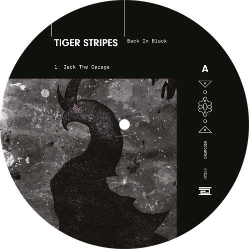 """Tiger Stripes/BACK IN BLACK 12"""""""