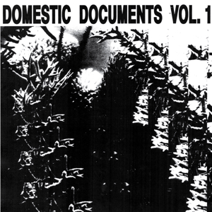 Various/DOMESTIC DOCUMENTS VOL 1 DLP
