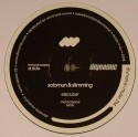 "Solomun & Stimming/EISZAUBER RMXS 12"""