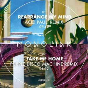 Monolink/REMIXES PT 2 12""