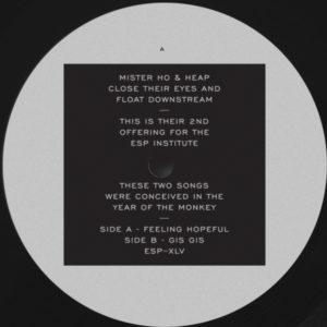 """Mister Ho & Heap/FEELING HOPEFUL 12"""""""