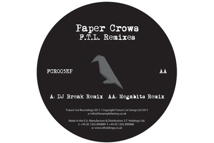 Paper Crows/FOLLOW THE.. (BREAK RMX) 12""