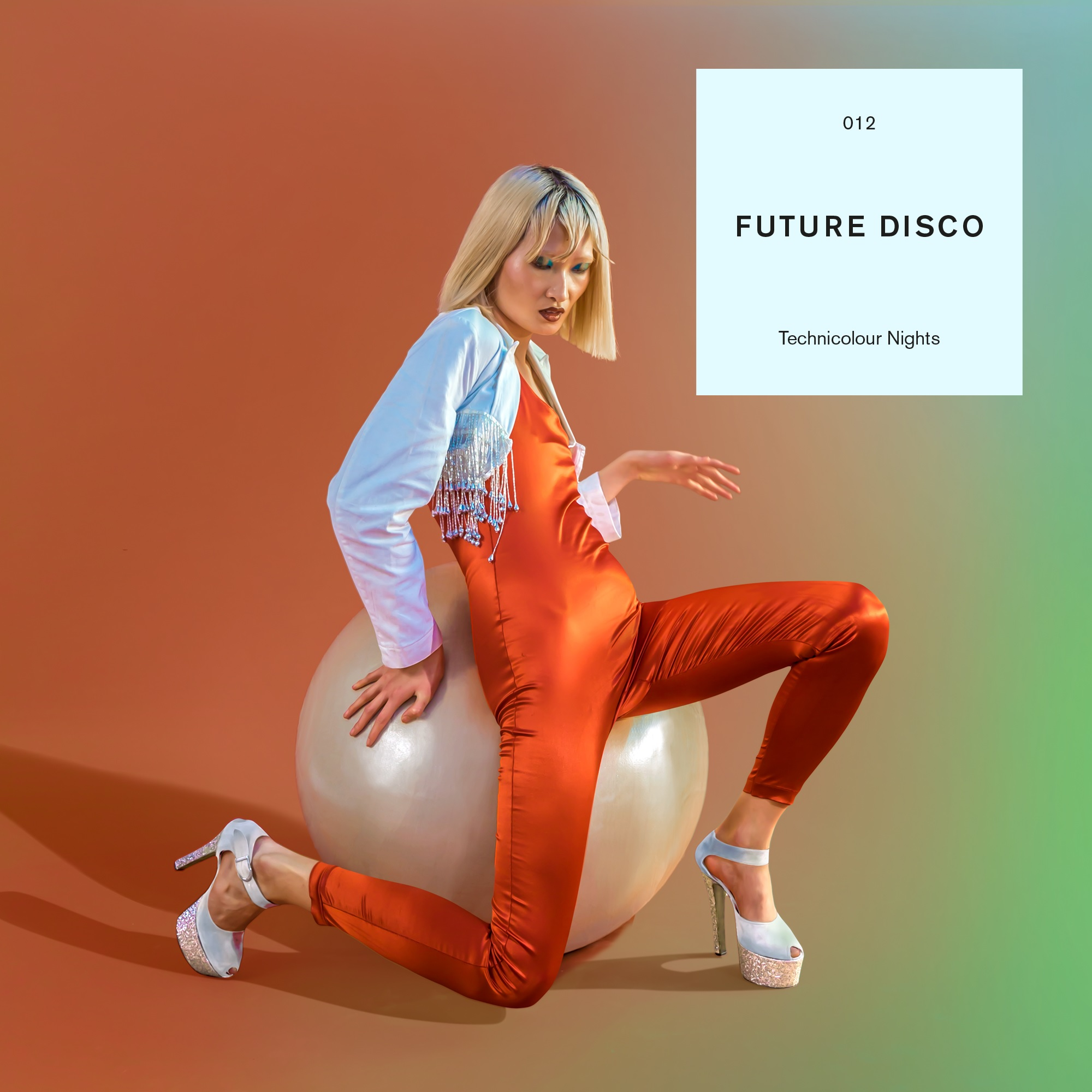 Various/FUTURE DISCO 012 DLP