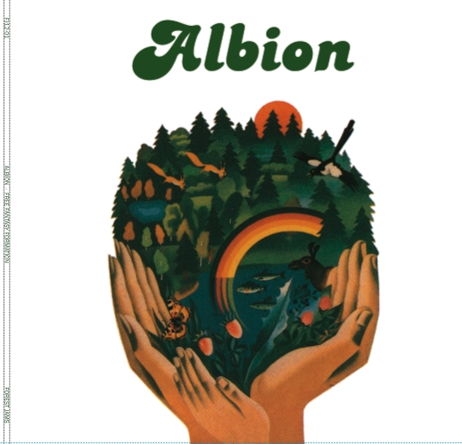 Albion/FREE FANTASY FORMATION 12""