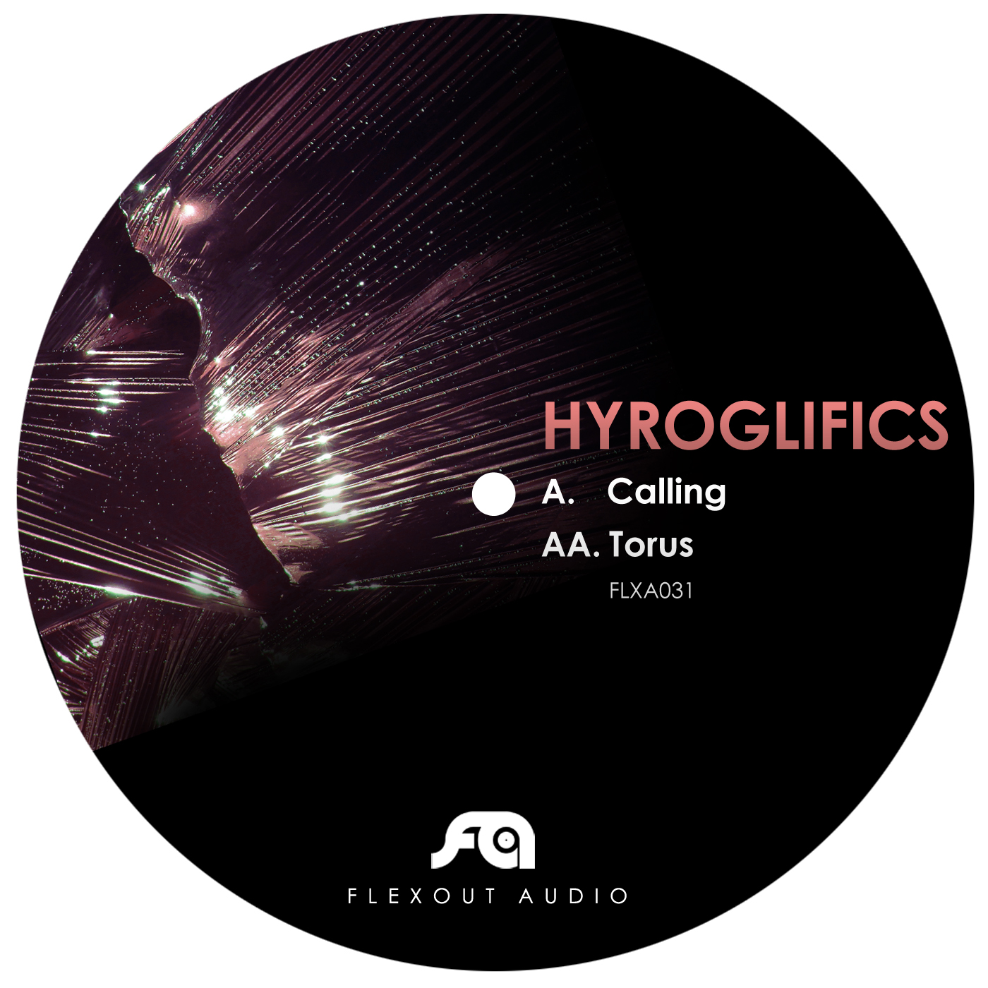 "Hyroglifics/CALLING 12"""