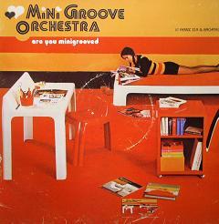 """Mini Groove Orchestra/ARE U..? 12"""""""