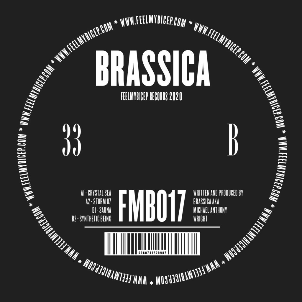 Brassica/CRYSTAL SEA 12""