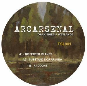 Arcarsenal/DARK SKIES AND WETLANDS 12""
