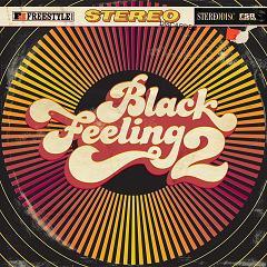 Various/BLACK FEELING VOLUME 2  CD