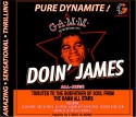 Various/GAMM DOIN' JAMES CD
