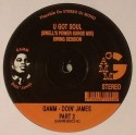 Various/GAMM DOIN' JAMES VOL. 2 EP 12""