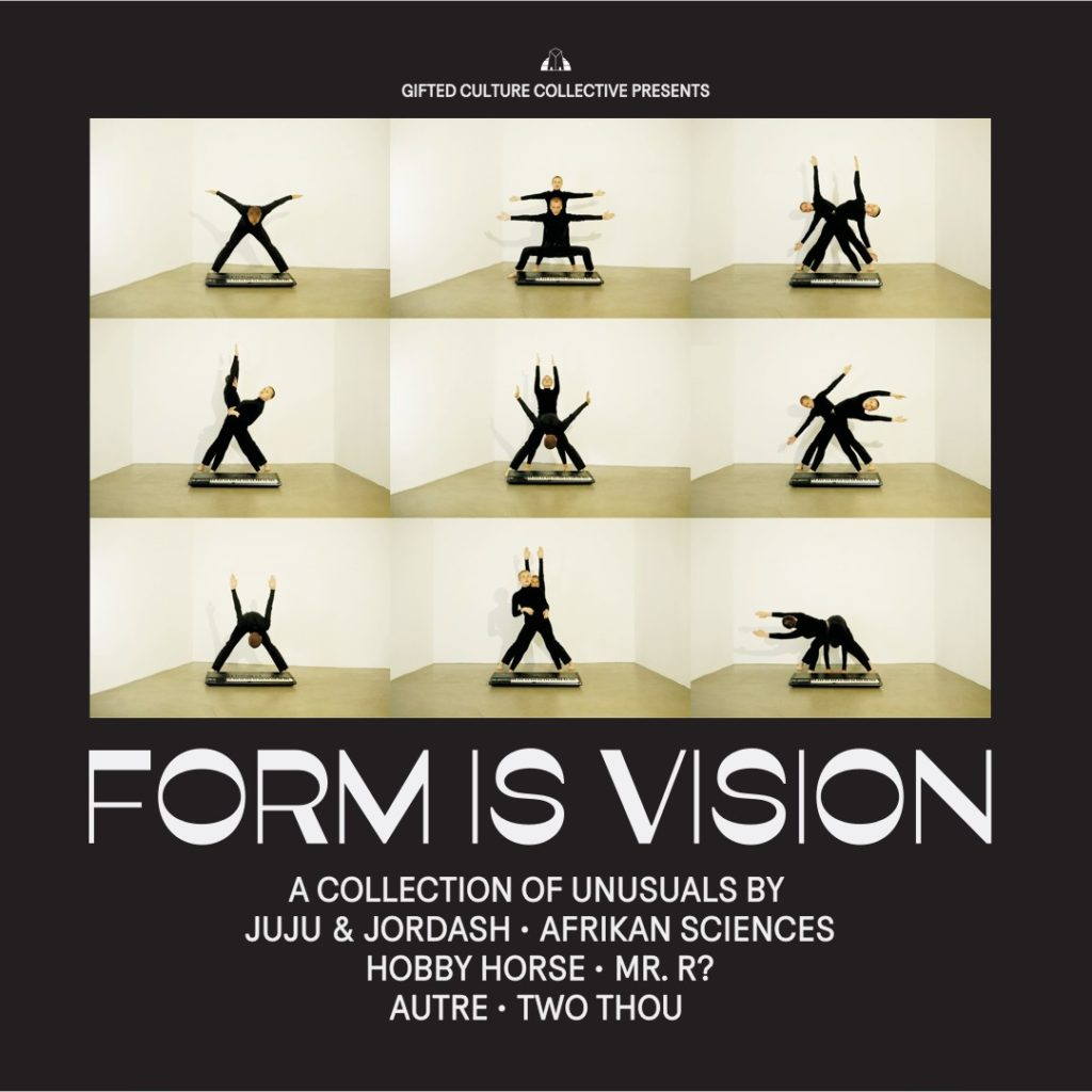 Various/FORM IS VISION LP