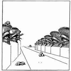 """Moon B/ENTROPIC FEELINGS EP 12"""""""