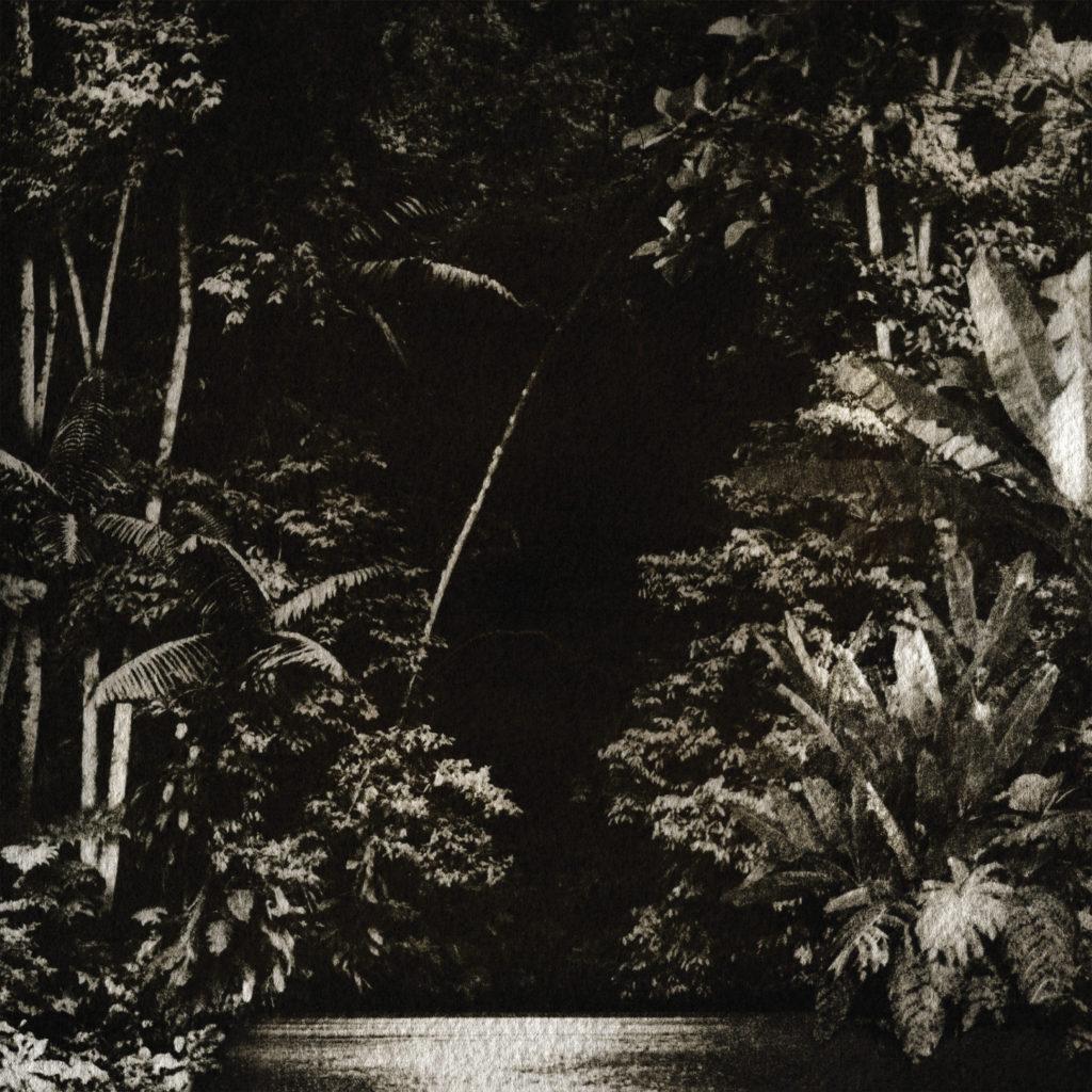 """Nicola Cruz/ARPEJOS DA FLORESTA EP 12"""""""