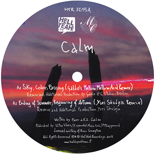Calm/BY YOUR SIDE REMIXES PT 3 12""