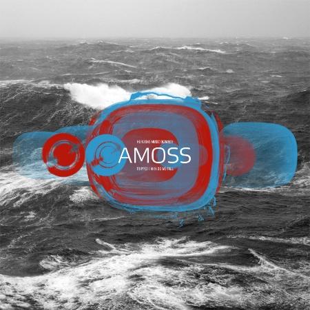 "Amoss/TRIPPED 12"""