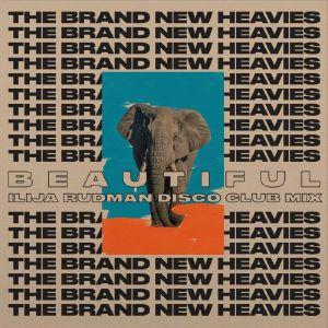 """Brand New Heavies/ILIJA RUDMAN RMX'S 7"""""""