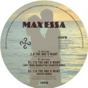 Max Essa/2 B THE ONE YOU WANT 12""