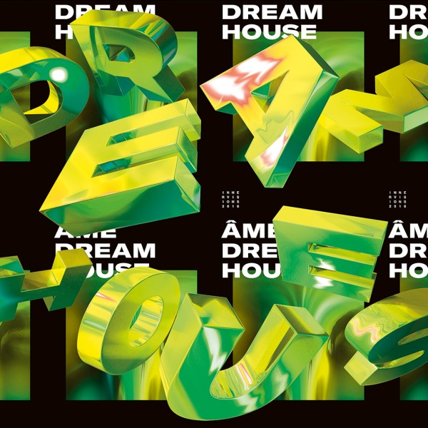 Ame/DREAM HOUSE REMIXES PT 2 12""