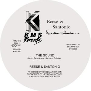 Reese & Santonio/THE SOUND & HOW TO 12""