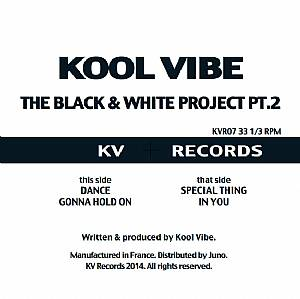 Kool Vibe/BLACK & WHITE PROJECT PT 2 12""