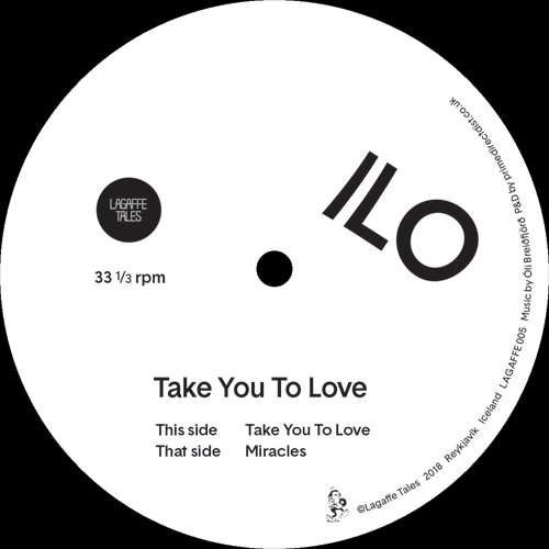 Ilo/TAKE YOU TO LOVE 12""