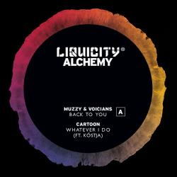Various/LIQUICITY ALCHEMY SAMPLER 12""