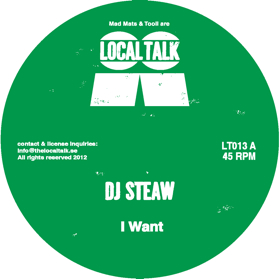 DJ Steaw/I WANT & SKY HUNT 12""