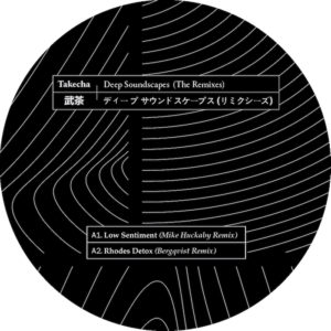 Takecha/DEEP SOUNDSCAPES: REMIXES 12""