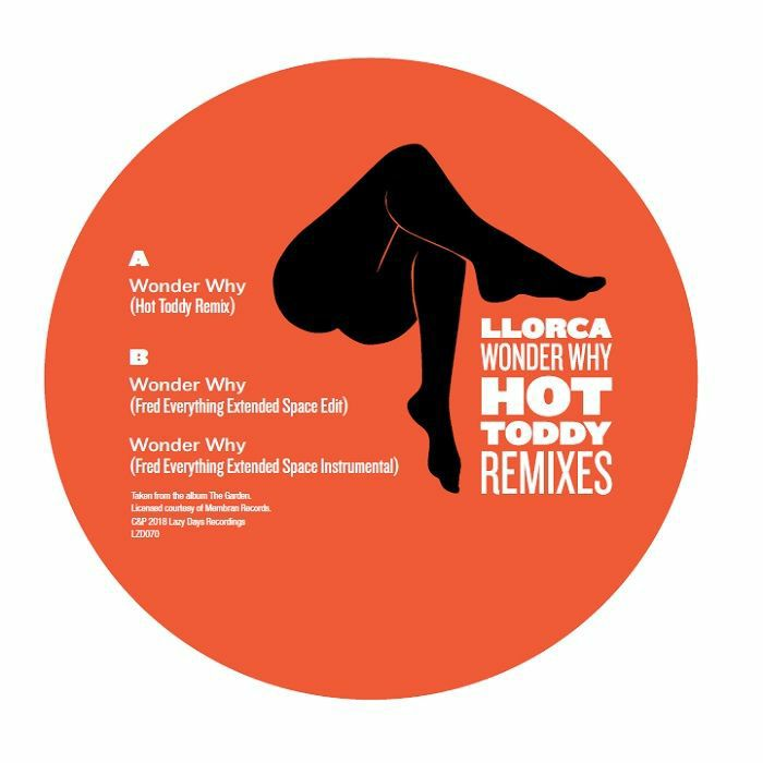 Llorca/WONDER WHY (HOT TODDY REMIX) 12""