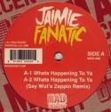 """Jaimie Fanatic/WHATS HAPPENIN TO YA 12"""""""