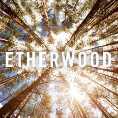 Etherwood/ETHERWOOD LP + CD