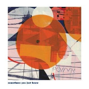 """Pollyn/SOMETIMES...(MOODYMANN RMX) 12"""""""