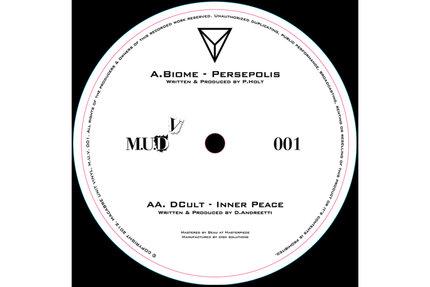 """Biome/PERSEPOLIS 12"""""""