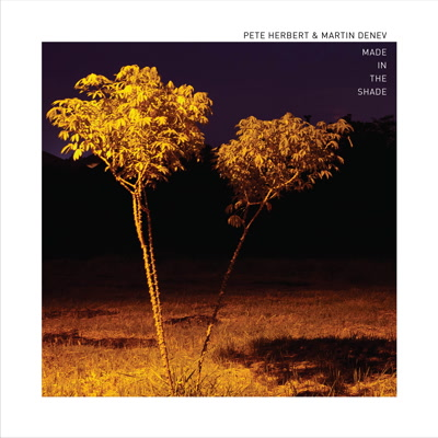 Pete Herbert/MADE IN THE SHADE LP