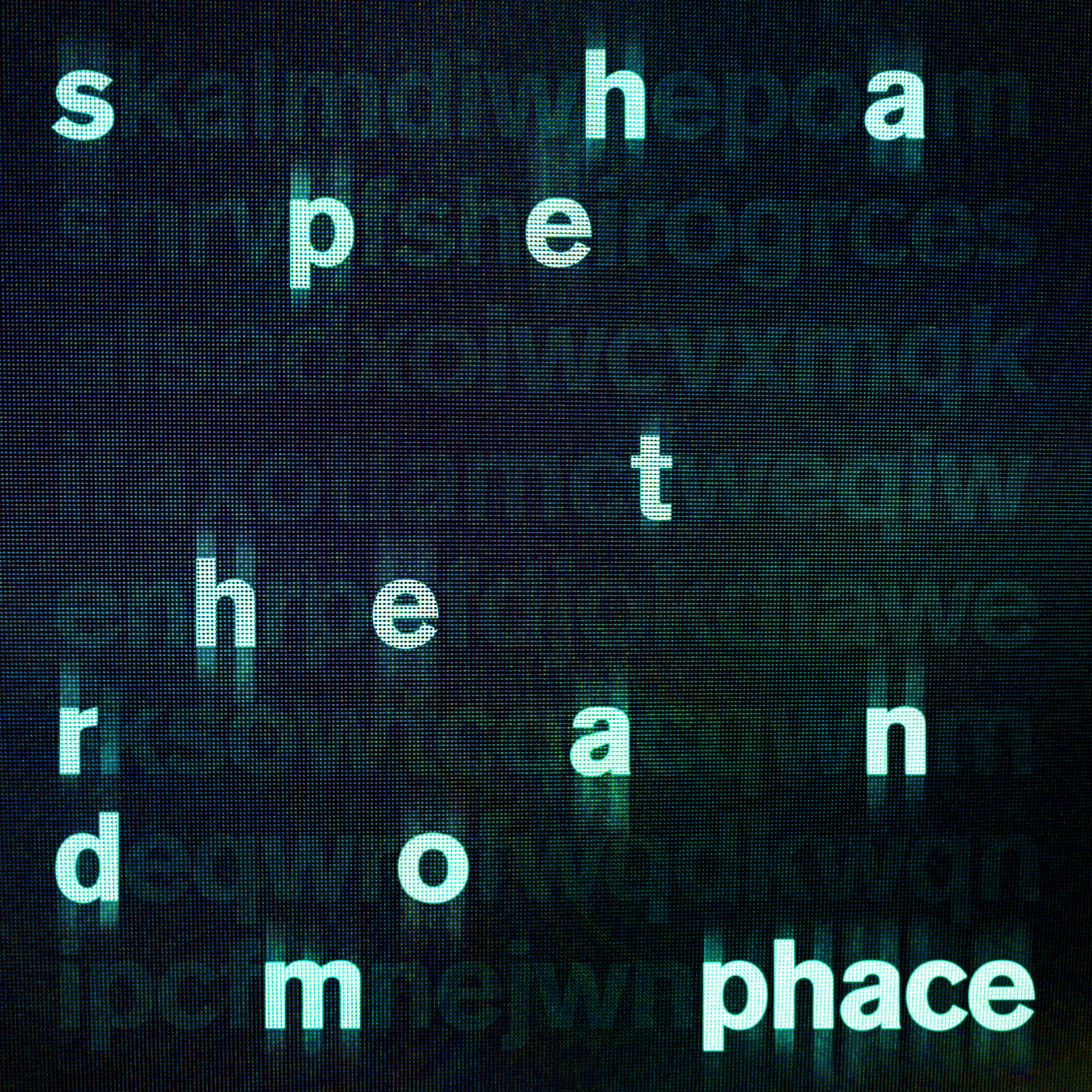 Phace/SHAPE THE RANDOM SMPLR #2 D12""