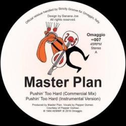 """Master Plan/PUSHIN' TOO HARD 12"""""""