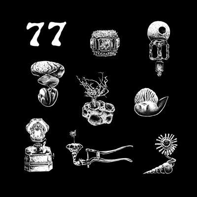 Hypnobirds/77: A BRIEF LANDING... LP