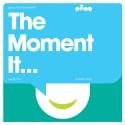Various/THE MOMENT IT...(PENG) CD